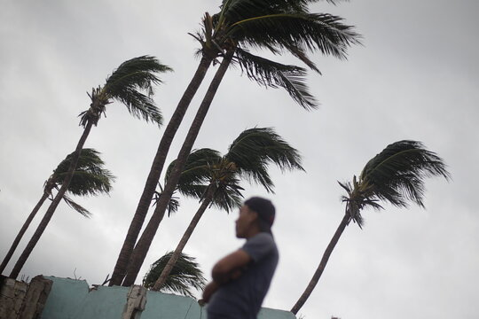 A man looks on as palm trees sway by the wind as Storm Iota approaches, in Cedeno