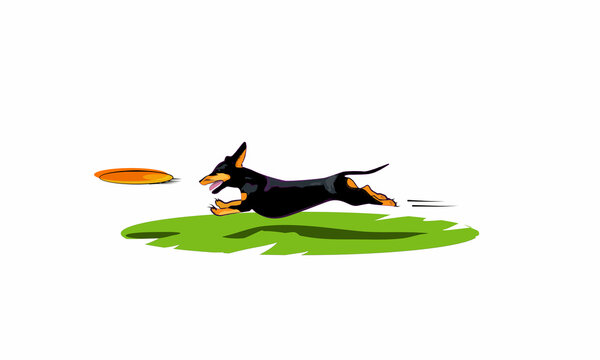 Dachshund and a flying disk, high quality vector graphics, digital art, EPS and SVG File formats