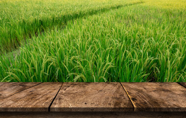 Wood table on blurred background of green rice field or Wooden board empty mockup for display of product.