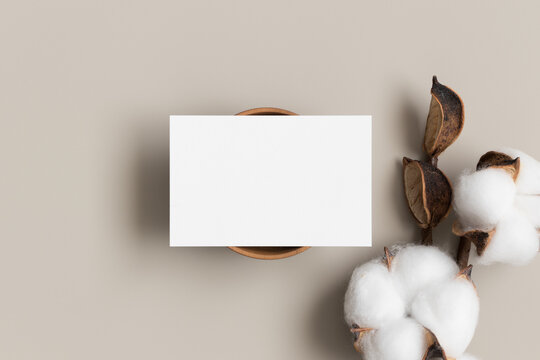White business card mockup with a dried cotton branch. 85x55mm