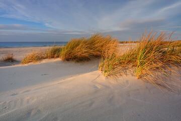 Morze Bałtyckie, plaża ,wydmy ,biały piasek ,trawa ,falochron, port, Kołobrzeg,Polska.