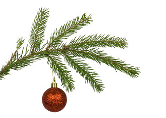 A red Christmas ball on a branch of the tree isolated on white background