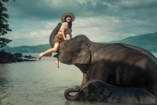 Asian happy woman tourist on elephant in the sea.