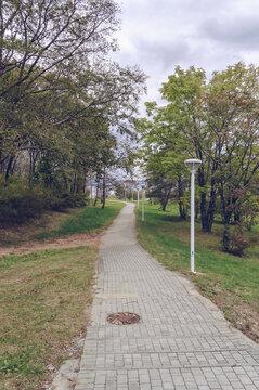 alley in park near Far Eastern federal university