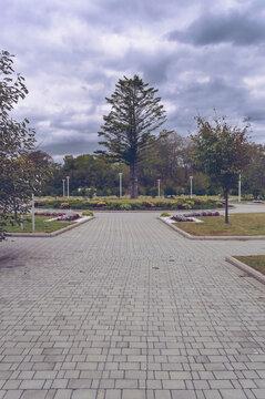 park landscaping near Far Eastern federal university