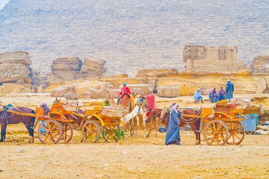Transport in Giza Necropolis, Egypt