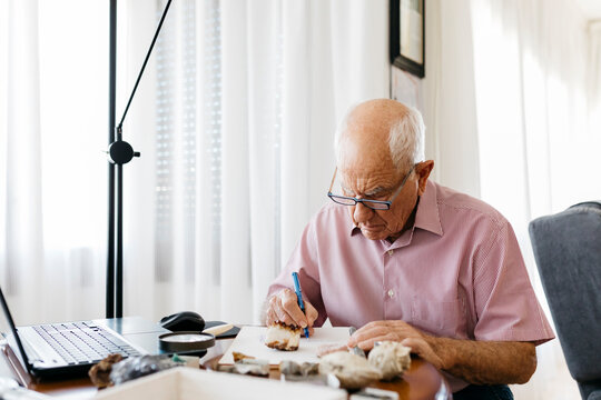 Senior man writing in book while sitting with minerals and fossils at table