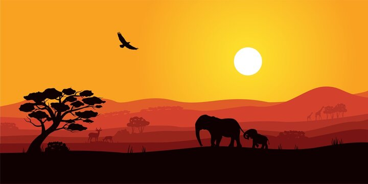 Safari Africa sunset with wild animal silhouette. Savanna landscape with tree, elephant, giraffe, elk and eagle soaring in sky under ray of setting sun vector illustration isolated on white background