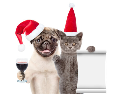 Funny cat holds empty list. Pug puppy holds glass of wine. Pets wearing red christmas hats. isolated on white background