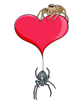 spiders on a heart
