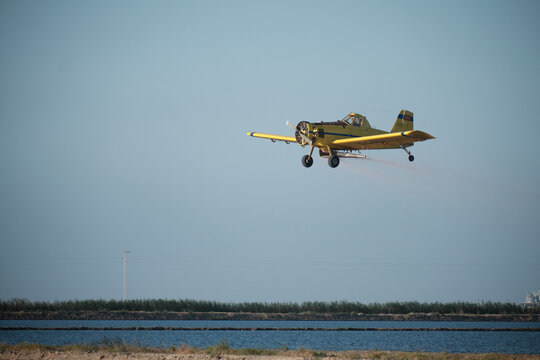 Plane sowing rice in the waterlogged field.