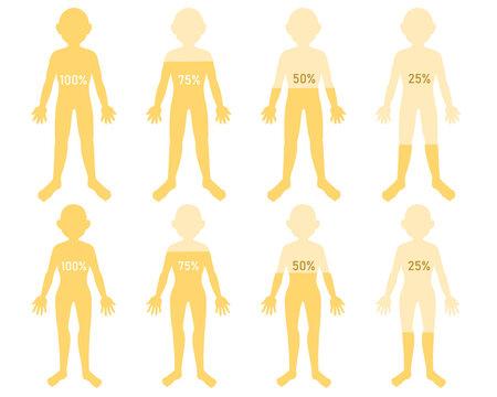 体の水分 黄色 数字付き(線無し)