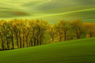 Zielone pola Morawy Południowe -Czeska Toskania