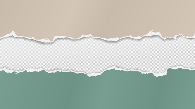 Torn of green and beige paper are on transparent, squared background for text, advertising or design. Vector illustration