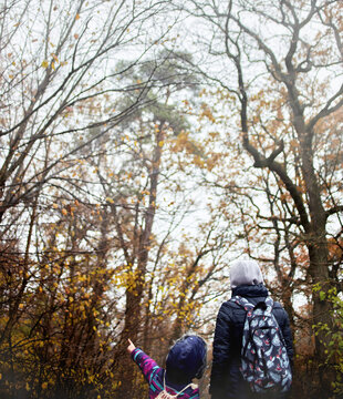 Rear view of mother and daughter with backpacks walking in autumn forest and little girl points hand