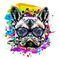abstract colored artistic dog, graphic design concept