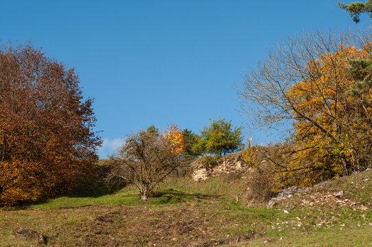 a landscape in swabian alb in germany in autumn