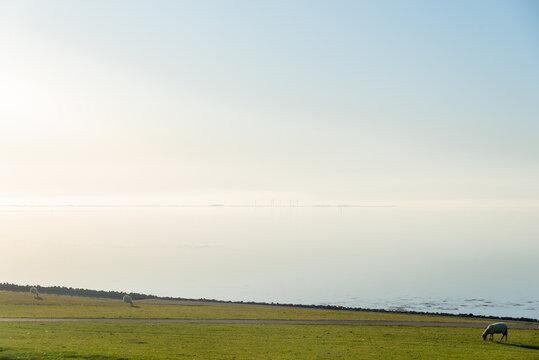 View from Elisabeth-Sophien-Koog towards the Hallig Pellworm