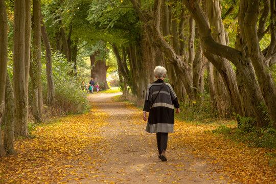 Spaziergang durch den herbstlichen Park