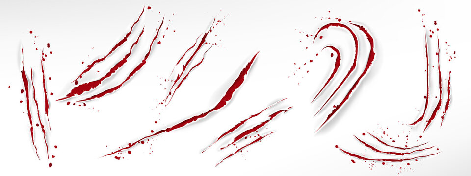 Cat claw scratches with blood drops, red torn slashes from wild animal, tiger, bear or lion paws isolated on white background. Vector realistic sharp talons marks, wounds with bloody splatter