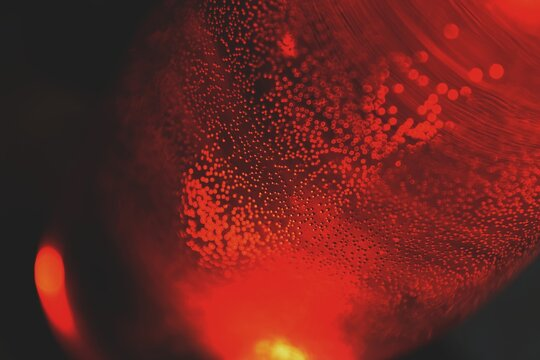 Close-up Of Red Lava Lamp
