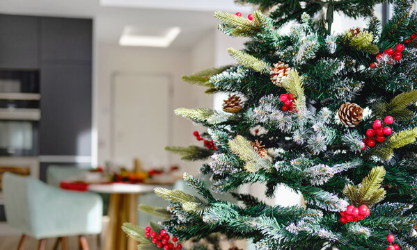 Close up view decorated natural or artificial Christmas Tree inside of modern living room or restaurant. New Year celebration concept