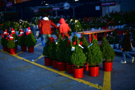 A mother and her children walk past Christmas trees for sale outside a Home Depot store in Wilmington