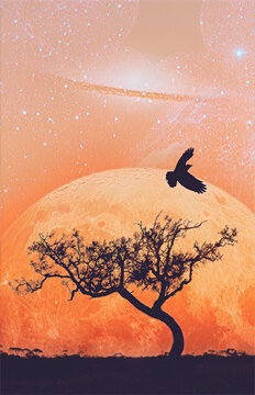 Fiction book cover template - landscape of lone tree silhouette and flying bird with planet in vivid orange sky - digital illustration. Elements of this image are furnished by NASA