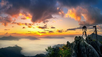 Wall Mural - Panorama of Doi pha tang and sunrise in morning, Chiang rai, Thailand.