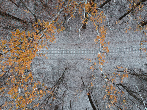 Aerial view with a drone of a railway in the winter forest