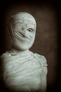 Portrait Of Egyptian Mummy With Bandaged Face