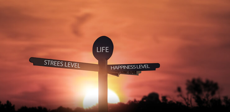 stress level and happiness level choice directory concept background sunset.