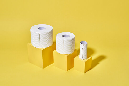 Toilet Tissue The Great Equalizer
