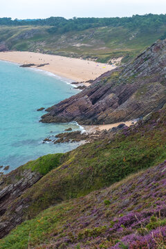 Scenic view of the Atlantic coast with beach and lilac heath meadows at Cape Erquy in Brittany in northern France