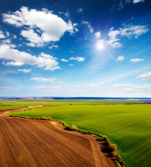 Wall Mural - Perfect aerial photography of green field in sunny day. Top view drone shot.
