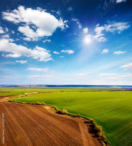 Wall mural Perfect aerial photography of green field in sunny day. Top view drone shot.