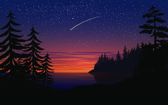 Night landscape with trees and starry sky