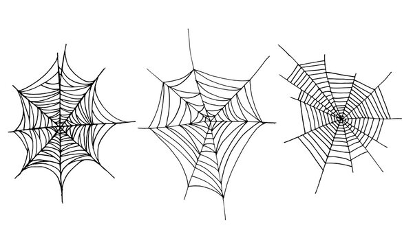 Set of vector illustrations of cobwebs drawn by hands. Decoration element isolated on white background