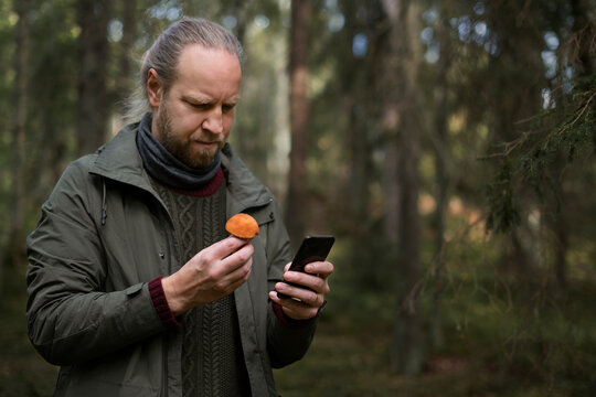 Man holding mushroom and cell phone, Sweden