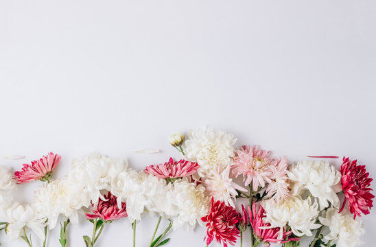 Floral pattern with white and pink flowers on white background.