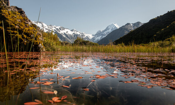 Reflection of Mt.Cook in Red Tarns pond, Aoraki National Park, New Zealand