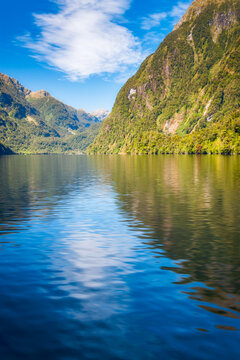White cloud reflected in the water of the fjord at Doubtful Sound on a beautiful summer day in New Zealand, South Island.