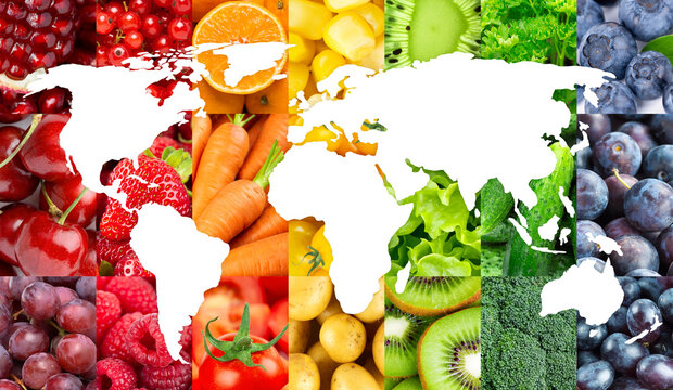 World map of fruits and vegetables. Fresh food. Concept