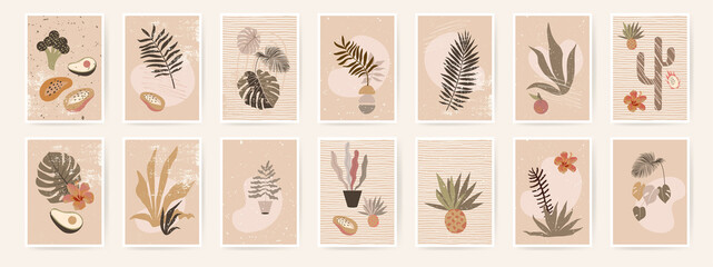 Fototapeta Abstract organic posters. Fluid organic shapes, neutral natural colors. Trendy contemporary collage artistic prints. Mid Century Modern design. Plant abstraction posters.Grungy textures. EPS10 vector