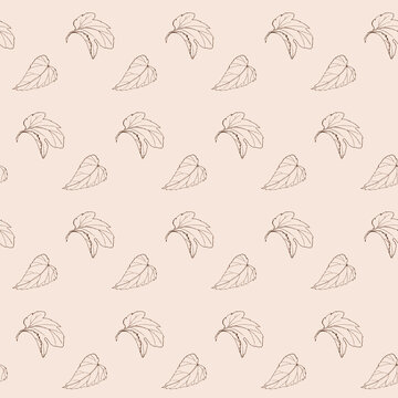 seamless beige hand drawn pattern with leaves of hop