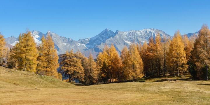 Panorama einer Herbstlandschaft in den Alpen von Österreich