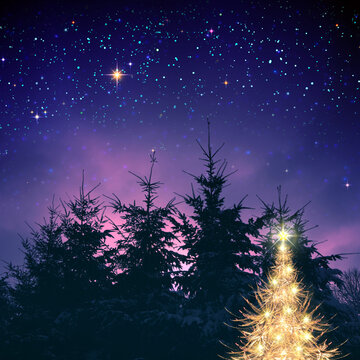 Golden Christmas tree in winter forest and stars sky.Christmas Card.