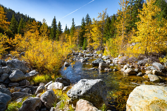 An Autumn scenery of the North Yuba River with trees changing colors.