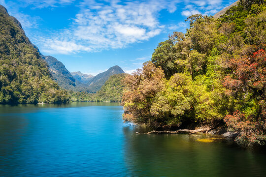 Untouched natural beauty at Deep Cove in the remote fjord at Doubtful Sound with incredible alpine scenery and pristine waters in New Zealand, South Island.