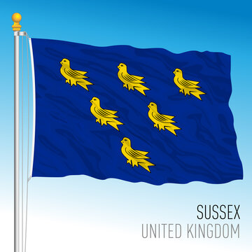 Sussex county flag, United Kingdom, vector illustration